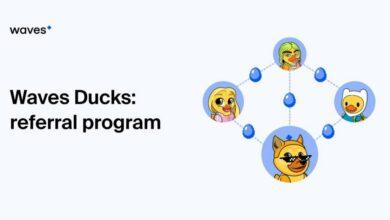 برنامج الإحالة في Waves Ducks
