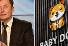 بيبي دوجي Baby Doge