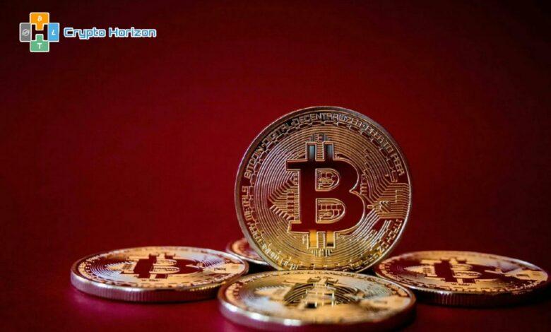 عناوين Bitcoin النشطة