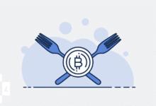 ما هي Bitcoin Forks أو شوكة البيتكوين؟